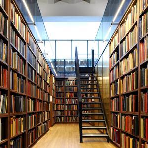 Библиотеки Старого Дрожжаного