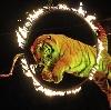 Цирки в Старом Дрожжаном